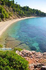 Stafylos | Skopelos Sporaden | De Griekse Gids foto 8 - Foto van De Griekse Gids