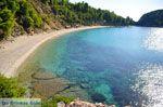 Stafylos | Skopelos Sporaden | De Griekse Gids foto 9 - Foto van De Griekse Gids