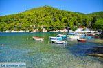 Agnontas | Skopelos Sporaden | De Griekse Gids foto 3 - Foto van De Griekse Gids