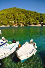 Agnontas | Skopelos Sporaden | De Griekse Gids foto 7 - Foto van De Griekse Gids