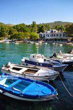Agnontas | Skopelos Sporaden | De Griekse Gids foto 8 - Foto van De Griekse Gids