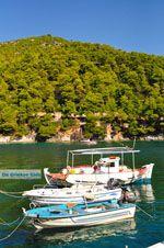 Agnontas | Skopelos Sporaden | De Griekse Gids foto 9 - Foto van De Griekse Gids