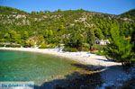 Limnonari bij Agnontas | Skopelos Sporaden | De Griekse Gids foto 6 - Foto van De Griekse Gids
