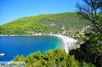 Panormos Skopelos | Sporaden | De Griekse Gids foto 5 - Foto van De Griekse Gids