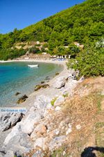 Panormos Skopelos | Sporaden | De Griekse Gids foto 12 - Foto van De Griekse Gids
