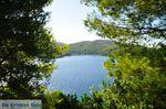 Panormos Skopelos | Sporaden | De Griekse Gids foto 16 - Foto van De Griekse Gids