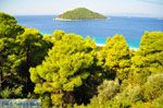 Milia | Skopelos Sporaden | De Griekse Gids foto 3 - Foto van De Griekse Gids