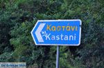 Kastani | Skopelos Sporaden | De Griekse Gids foto 1 - Foto van De Griekse Gids