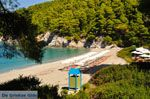 Kastani | Skopelos Sporaden | De Griekse Gids foto 4 - Foto van De Griekse Gids