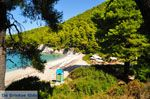Kastani | Skopelos Sporaden | De Griekse Gids foto 8 - Foto van De Griekse Gids
