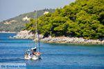 Kastani | Skopelos Sporaden | De Griekse Gids foto 9 - Foto van De Griekse Gids