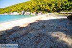 Kastani | Skopelos Sporaden | De Griekse Gids foto 12 - Foto van De Griekse Gids