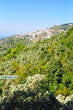 Glossa | Skopelos Sporaden | De Griekse Gids foto 3 - Foto van De Griekse Gids