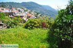 Glossa | Skopelos Sporaden | De Griekse Gids foto 17 - Foto van De Griekse Gids