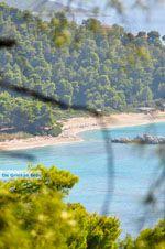 Bij de stranden Kastani en Milia | Skopelos Sporaden | De griekse Gids foto 1 - Foto van De Griekse Gids