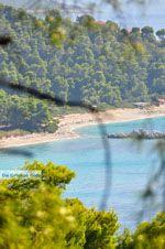 Bij de stranden Kastani en Milia | Skopelos Sporaden | De griekse Gids foto 2 - Foto van De Griekse Gids