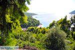 Stranden Kastani en Milia |Skopelos Sporaden | De Griekse Gids foto 1 - Foto van De Griekse Gids