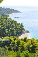 Stranden Kastani en Milia |Skopelos Sporaden | De Griekse Gids foto 3 - Foto van De Griekse Gids