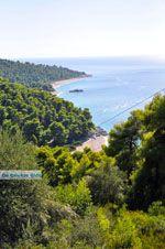 Stranden Kastani en Milia |Skopelos Sporaden | De Griekse Gids foto 4 - Foto van De Griekse Gids