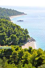 Stranden Kastani en Milia |Skopelos Sporaden | De Griekse Gids foto 7 - Foto van De Griekse Gids