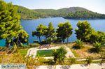 Panormos Skopelos | Sporaden | De Griekse Gids foto 17 - Foto van De Griekse Gids