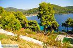 Panormos Skopelos | Sporaden | De Griekse Gids foto 19 - Foto van De Griekse Gids