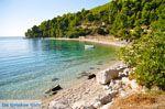 Panormos Skopelos | Sporaden | De Griekse Gids foto 22 - Foto van De Griekse Gids