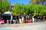 Skopelos stad | Sporaden | De Griekse Gids foto 82 - Foto van De Griekse Gids