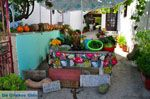 Skopelos stad | Sporaden | De Griekse Gids foto 86 - Foto van De Griekse Gids