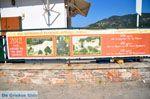 Skopelos stad | Sporaden | De Griekse Gids foto 95 - Foto van De Griekse Gids