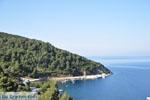Bij Pefkos | Skyros Griekenland - Foto van De Griekse Gids