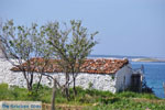 Bij Aghios Fokas | Skyros Griekenland foto 7 - Foto van De Griekse Gids