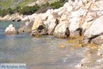 Bij Aghios Fokas | Skyros Griekenland foto 19 - Foto van De Griekse Gids