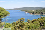 Bij Atsitsa | Skyros Griekenland foto 6 - Foto van De Griekse Gids