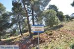 Bij Atsitsa | Skyros Griekenland foto 9 - Foto van De Griekse Gids