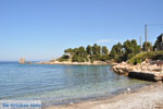 GriechenlandWeb.de Bij Atsitsa | Skyros Griechenland foto 13 - Foto GriechenlandWeb.de