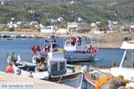 Haventje bij Molos en Magazia | Skyros Griekenland foto 4 - Foto van De Griekse Gids