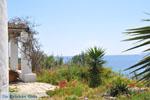 Kat bij Molos en Magazia bij Skyros stad | Skyros Griekenland foto 2 - Foto van De Griekse Gids