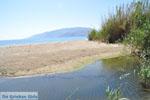 Bij Molos en Magazia | Skyros Griekenland foto 6 - Foto van De Griekse Gids