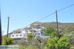GriechenlandWeb.de Aspous | Skyros Griechenland | GriechenlandWeb.de foto 2 - Foto GriechenlandWeb.de