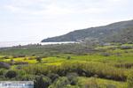 GriechenlandWeb.de Kalamitsa  | Skyros Griechenland foto 1 - Foto GriechenlandWeb.de