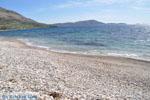 GriechenlandWeb.de Kalamitsa  | Skyros Griechenland foto 5 - Foto GriechenlandWeb.de