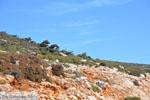 Vanaf Kalamitsa naar Vouno | Het zuiden van Skyros foto 3 - Foto van De Griekse Gids