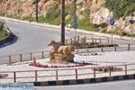 Rotonde bij Skyros stad | Griekenland | De Griekse Gids - Foto van De Griekse Gids