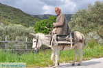 Man met Skyriaanse sandalen | Skyros Griekenland | Foto 1 - Foto van De Griekse Gids