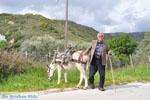 Man met Skyriaanse sandalen | Skyros Griekenland | Foto 2 - Foto van De Griekse Gids