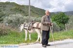 Man met Skyriaanse sandalen | Skyros Griekenland | Foto 3 - Foto van De Griekse Gids