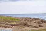 Palamari Skyros | Griekenland | De Griekse Gids foto 5 - Foto van De Griekse Gids