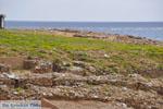 Palamari Skyros | Griekenland | De Griekse Gids foto 6 - Foto van De Griekse Gids