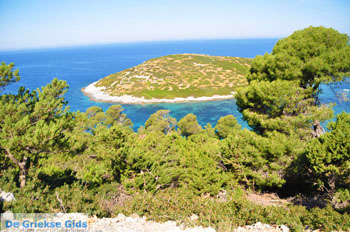 Bij Atsitsa | Skyros Griekenland foto 7 - Foto van De Griekse Gids
